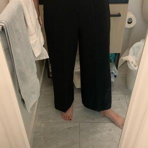 Zara Wide Legged Black Pant